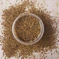 Yellowish Brown Natural Cumin Seeds Exporter