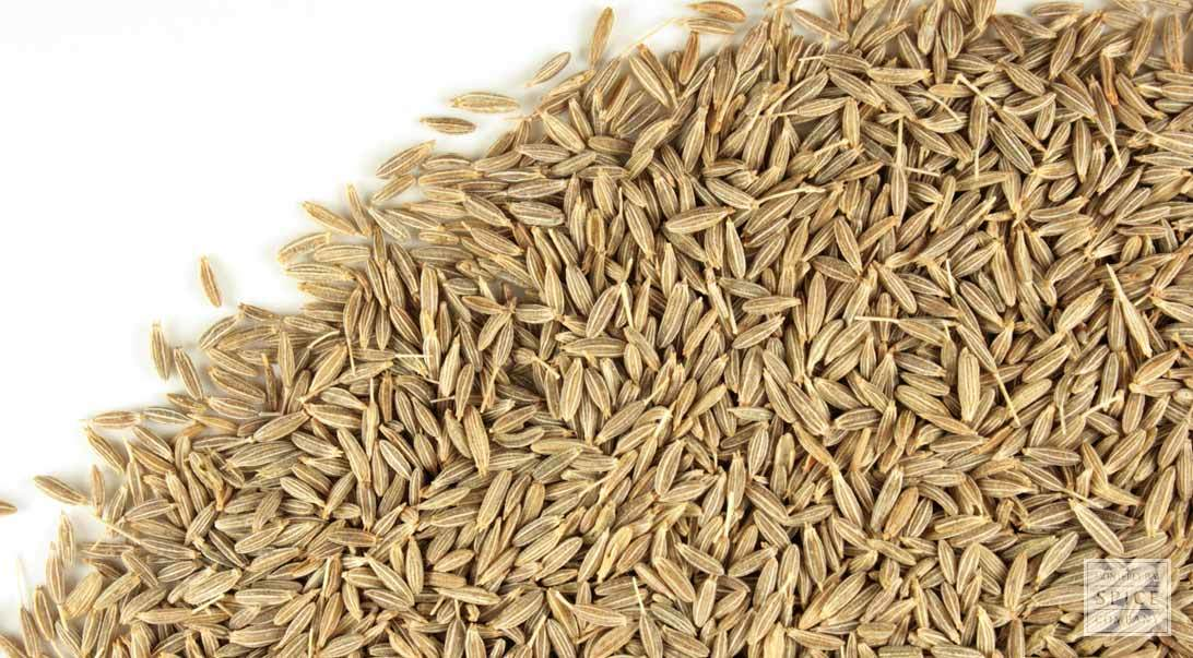 Single Herbs / Spices Products Types / Dried Style Cumin Seeds Exports