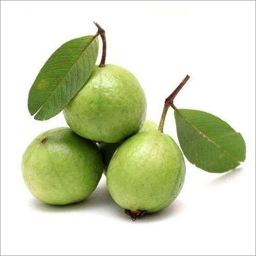 Fresho Guava