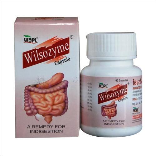 Ayurvedic Wilsozyme Capsules