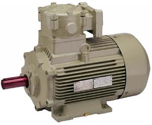 Ie3 High Efficiency Flame Proof Motors