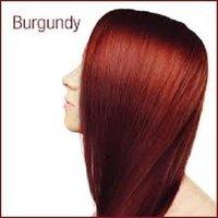 Henna Based Hair Color Burgundy Manufacturer/Exporter