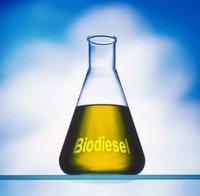 Industrial BioDiesel Oil