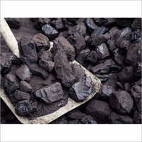 Petroleum Coal