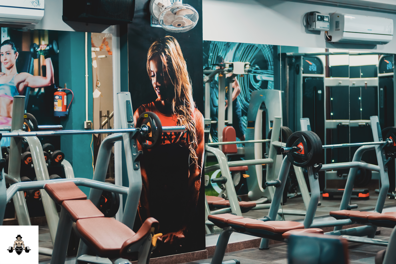 Gym setup services