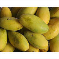 Dashehri Mango