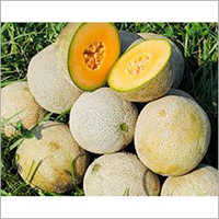 Pure Muskmelon