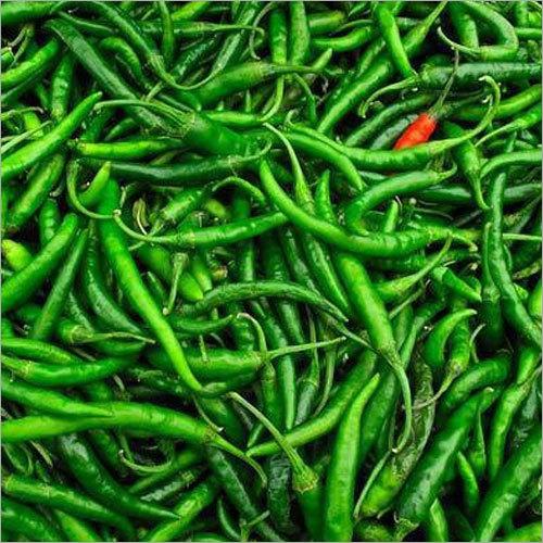 Fresh Green Chilly