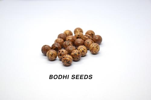 Bodhi Beads