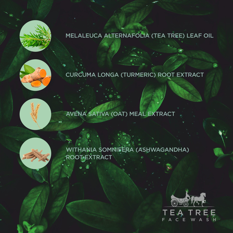 Tea Tree Face Wash