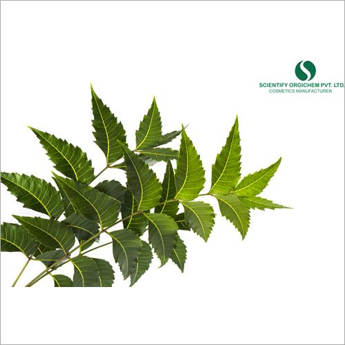 Neem Leaf Face Serum