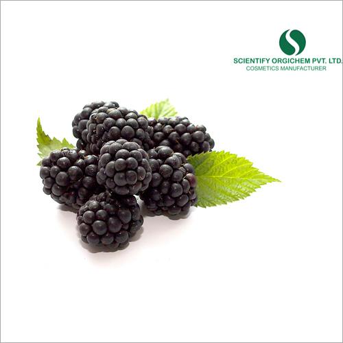 Blackberry Hair Serum