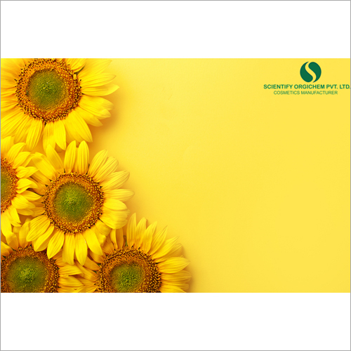 Sun Flower Lip Guard