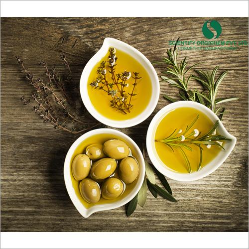 Olive Oil Lip Guard