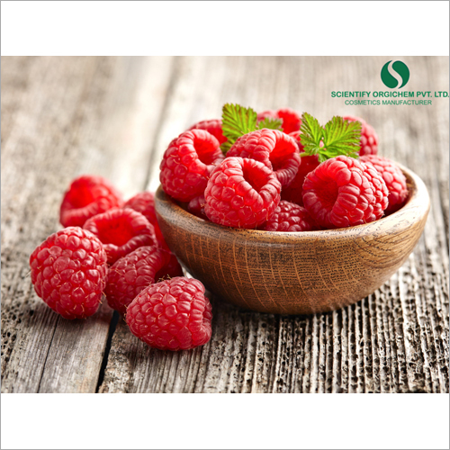 Raspberry Sun Protection Lotion