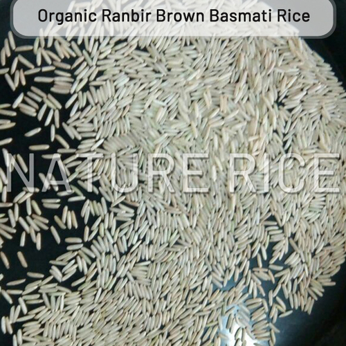 Organic Ranbir Brown Basmati Rice