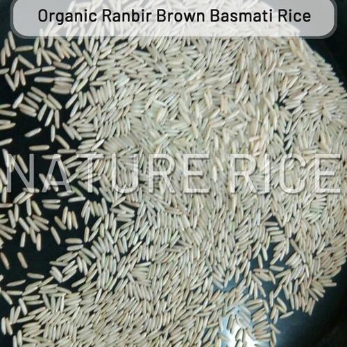 Organic Ranbir Brown Basmati Rice