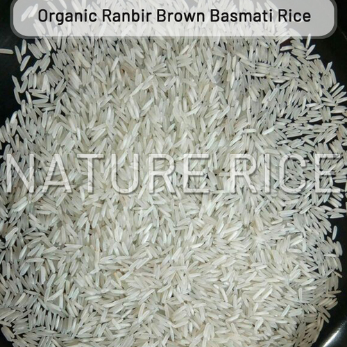Organic Ranbir White Basmati Rice