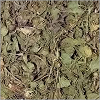 Dried Asiatic