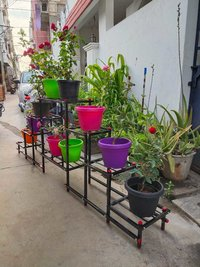 Plant and Pot Stand