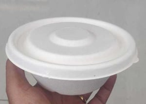 Biodegradable 500ml Container With Lid