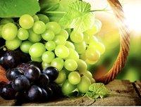 Potassium Fulvate Suppliers in India