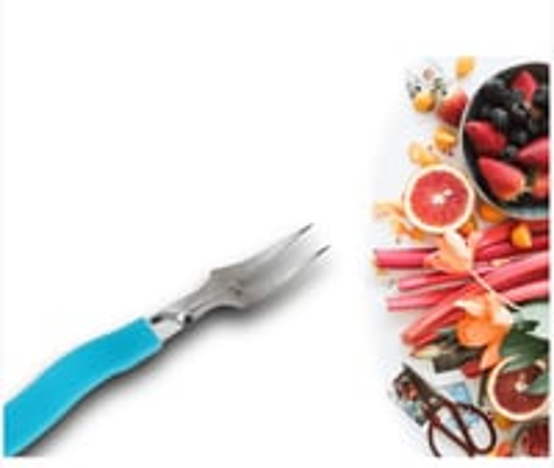 Stainless Steel Fruit Fork Set Of 10 Pcs