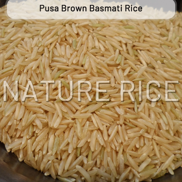 Pusa Brown Raw Basmati Rice
