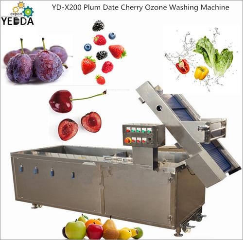 Plum Date Cherry Ozone Washing Machine