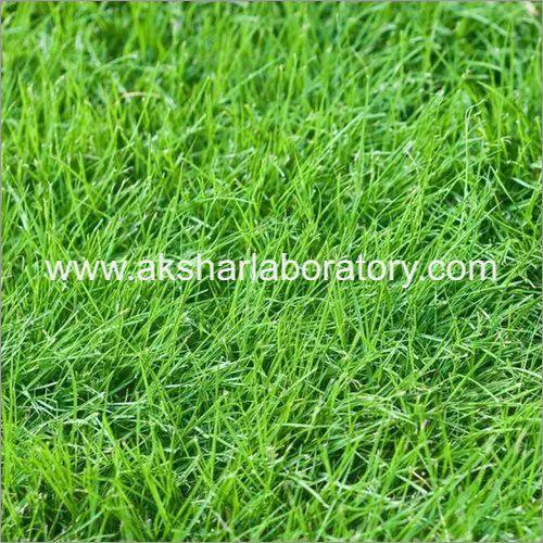 Agriculture Fertilizer Testing Services
