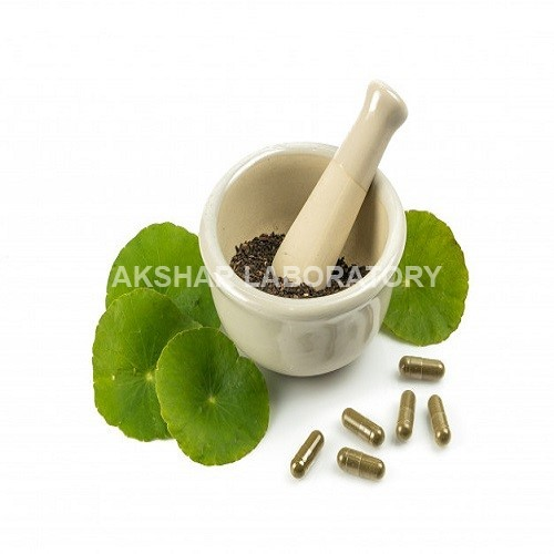 Herbal Ayurvedic Medicines Testing Services
