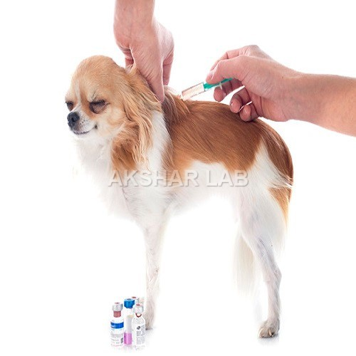 Veterinary Medicines Testing Services