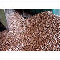 Cattle Raw Feed Testing Services