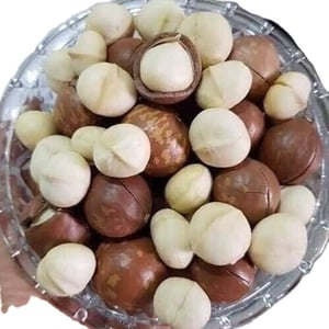 Raw Organic Macadamia Nuts with Shell and Without Shell