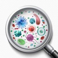 Bacterial Testing Services
