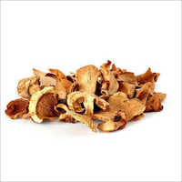 Fresh Dried Mushroom