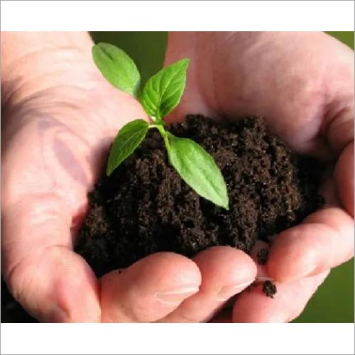Natural Bio Fertilizer