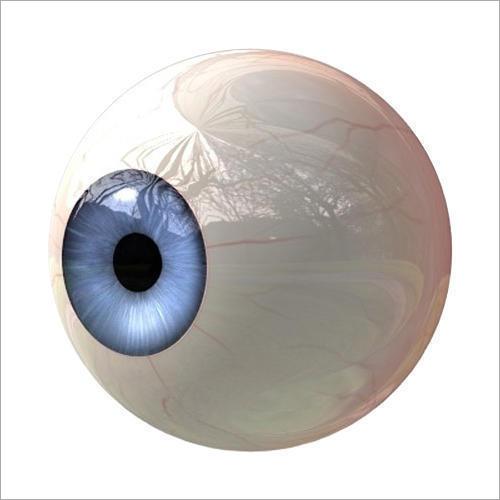 Cosmetic Artificial Eye