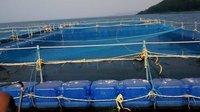Modular Fish Cage Culture Pontoon