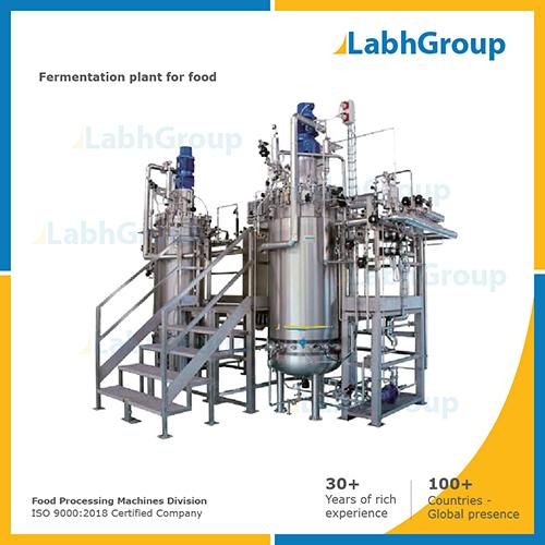 Fermentation Food Plant & Equipment
