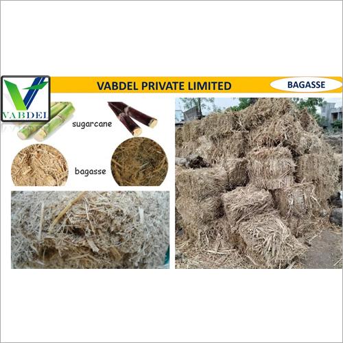Fresh Sugarcane Bagasse