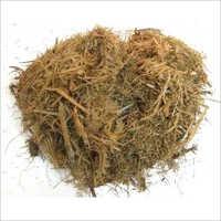 Sugarcane Raw Bagasse