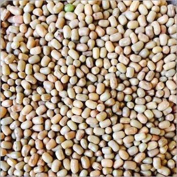 Organic Moth Beans