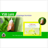 Yellow Stem Borer Pheromone Trap (YSB Lure) Scirpophaga Incertulas Pheromone Lure