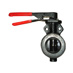 Butterfly Valve (Wafer-Flanged)