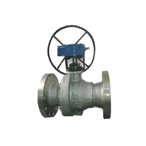 Gear Operated 2 pc Ball Valve
