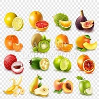 Food Contact Testing Services