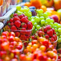 Pesticide Material Testing Services