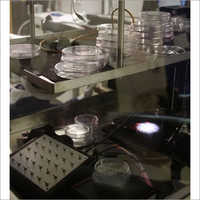 Optical Testing Services
