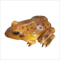 FRP Frog Statue